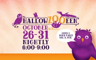 Hallowzooeen at the Tulsa Zoo