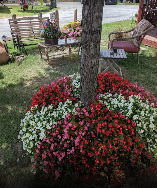 Riverview RV Park - Spring Flowers
